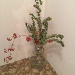 階段のお花を交換いたしました:東京の女性専用シェアハウス「息吹noie」